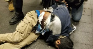 NYC Suicide Bomber in Port Authority